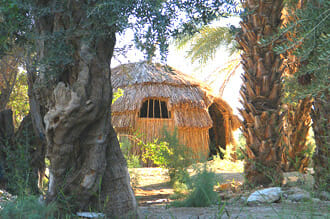 moa-bungalow